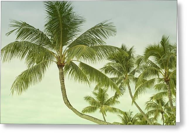 Gift Ideas For Her Greeting Cards - Polynesia Palm Trees Greeting Card by Gigi Ebert