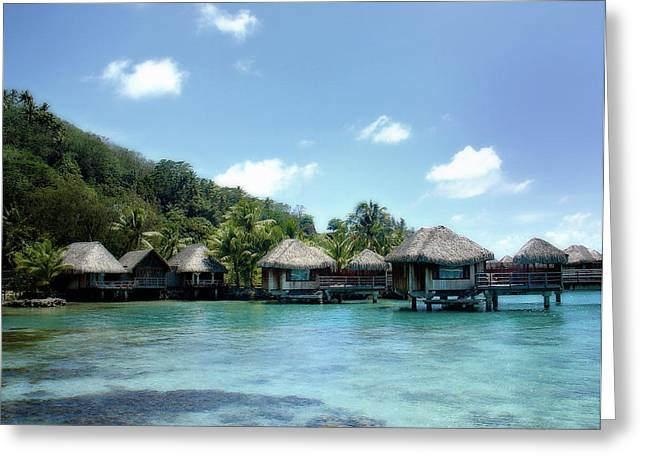 Boras Greeting Cards - Polynesian Tranquility Greeting Card by Julie Palencia