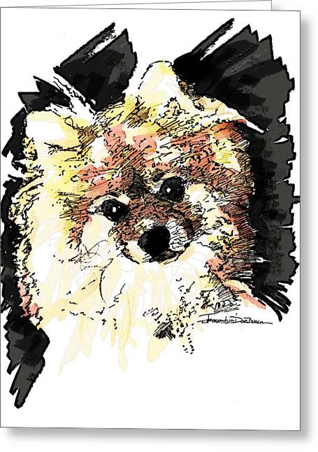 Pen And Ink Drawing Photographs Greeting Cards - Pomeranian Greeting Card by Jerrett Dornbusch