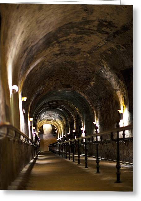 Winemaking Greeting Cards - Pommery Champagne Winery Passageway Greeting Card by Panoramic Images