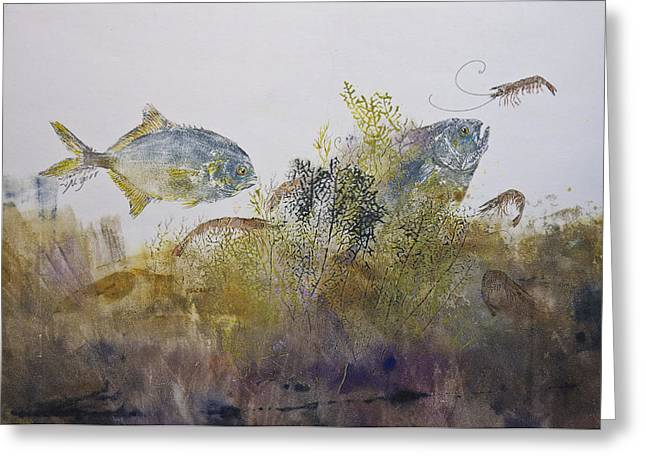 Gyotaku Greeting Cards - Pompano And Shrimp Greeting Card by Nancy Gorr