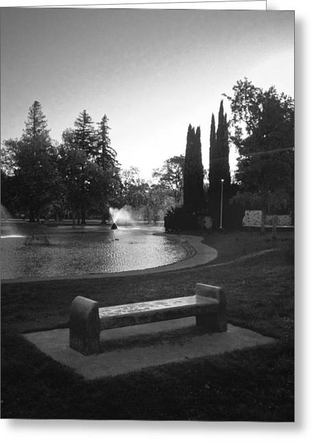 Outdoor Theater Greeting Cards - Pond and Bench at Land Park Greeting Card by Patrick Cosgrove