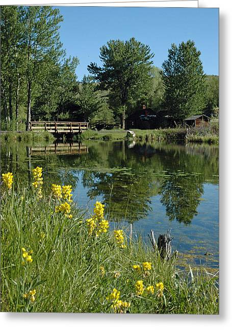 Gold Trout Greeting Cards - Pond and Bridge at Virginia City Montana Greeting Card by Bruce Gourley