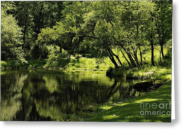 Solebury Farm Greeting Cards - Pond at Glen Oaks Farm Greeting Card by Addie Hocynec