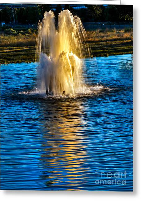 Wildlife Refuge. Greeting Cards - Pond Fountain Greeting Card by Robert Bales
