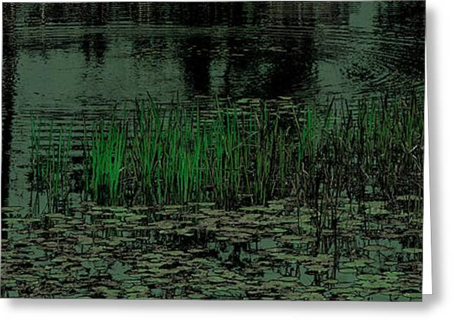 Nature Scene Digital Art Greeting Cards - Pond Grasses Panorama Greeting Card by David Patterson