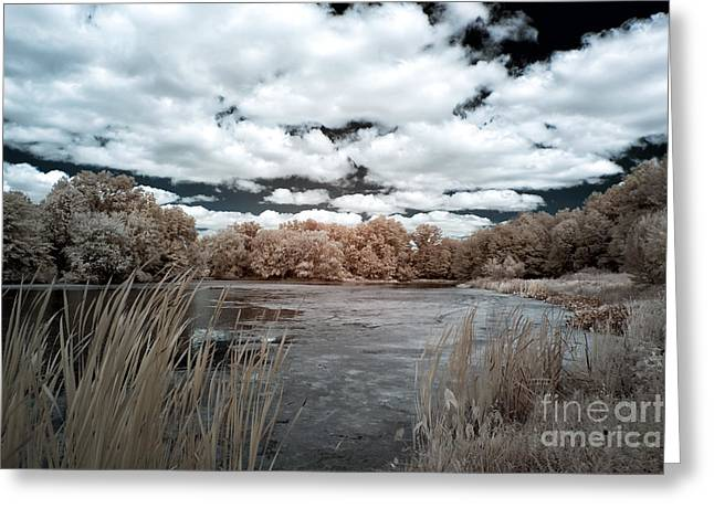 Pond In Park Photographs Greeting Cards - Pond in Autumn Greeting Card by John Rizzuto