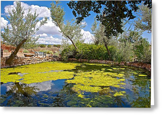 Pond In Park Greeting Cards - Pond in Pipe Spring National Monument-Arizona Greeting Card by Ruth Hager