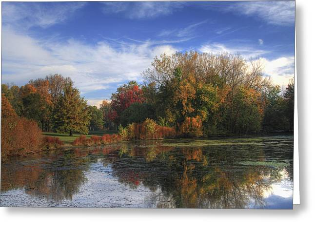 Pond In Park Greeting Cards - Pond in the Park Greeting Card by Richard Gregurich