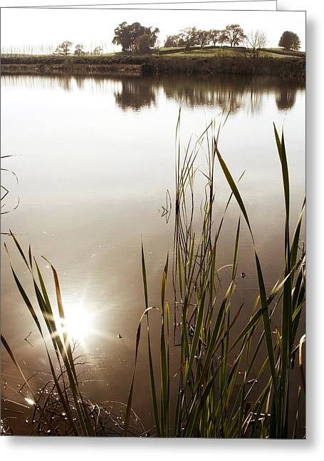 Calm Water Reflection Greeting Cards - Pond Greeting Card by Les Cunliffe