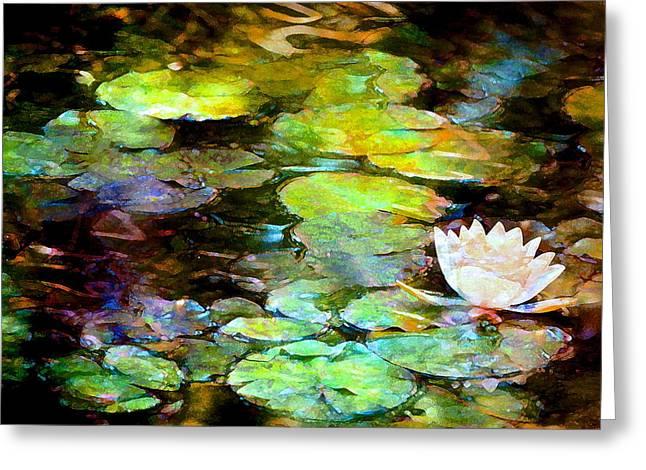 Pamela Cooper Greeting Cards - Pond Lily 30 Greeting Card by Pamela Cooper