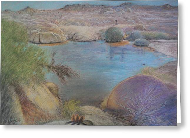 Pond In Park Pastels Greeting Cards - Pond on Live Oak Trail Greeting Card by Sandra Lytch
