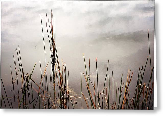 Bog Greeting Cards - Pond reflections Greeting Card by Les Cunliffe