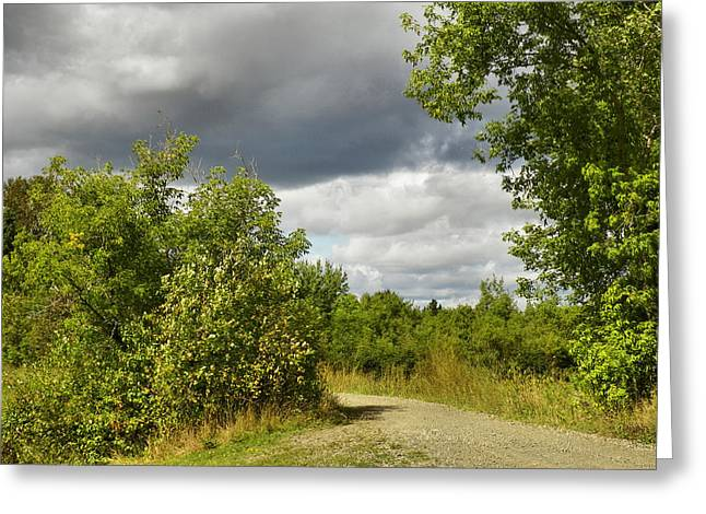 Rural Maine Roads Photographs Greeting Cards - Pond Trail Greeting Card by Gene Cyr
