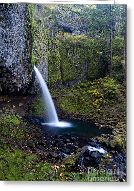 Ponytail Greeting Cards - Ponytail Falls In The Columbia River Greeting Card by William H. Mullins