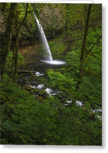 Ponytail Greeting Cards - Ponytail Falls through the trees Greeting Card by Vishwanath Bhat