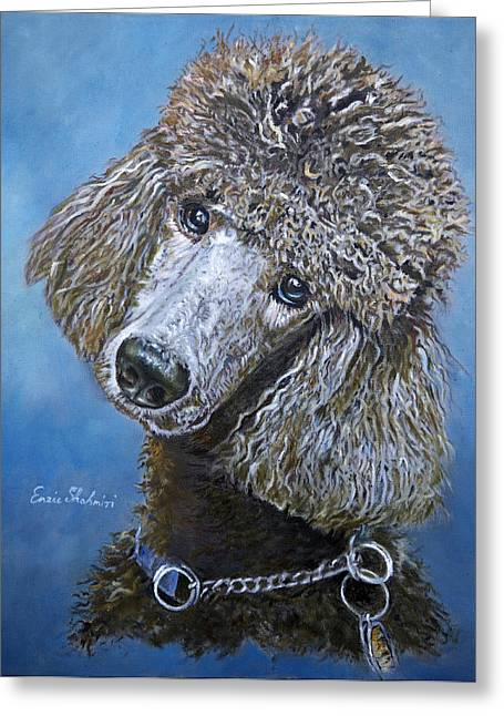 Domesticated Pet Greeting Cards - Poodle Gaze Greeting Card by Enzie Shahmiri