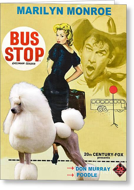 Dog Prints Greeting Cards - Poodle Standard Art - Bus Stop Movie Poster Greeting Card by Sandra Sij