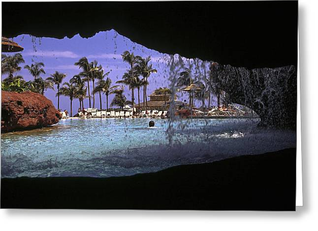 Freeform Greeting Cards - Pool and Palms Greeting Card by Sally Weigand