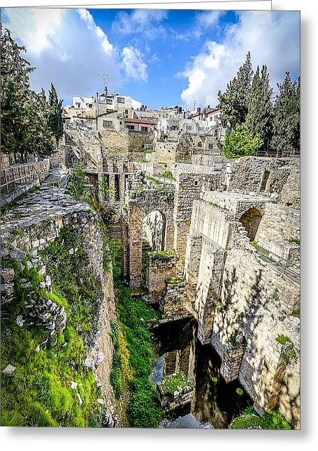 Beth Greeting Cards - Pool of Bethesda Greeting Card by David Morefield