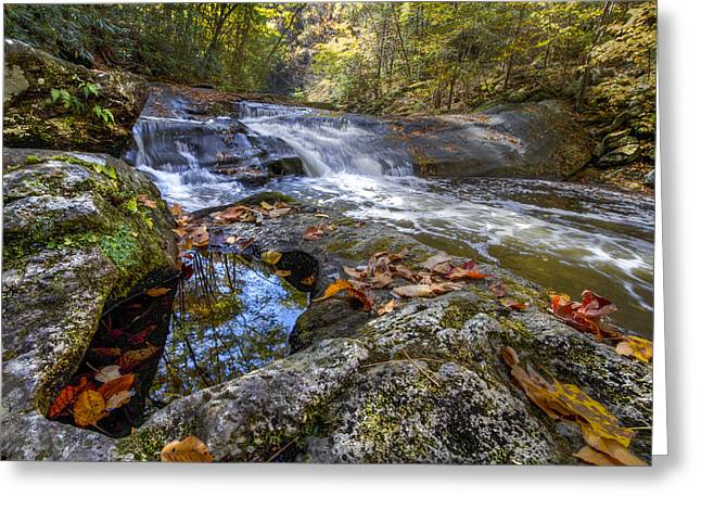 Reflections In River Greeting Cards - Pool Reflections Greeting Card by Debra and Dave Vanderlaan