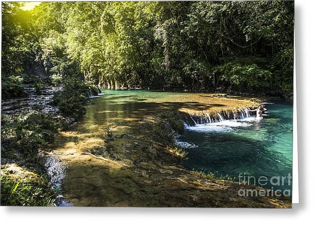 Natural Pool Greeting Cards - Pools of Semuch-champey Greeting Card by Yuri Santin