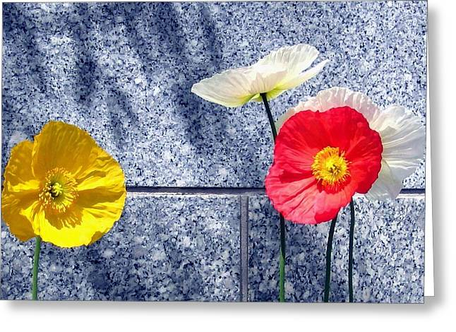 Granite Digital Art Greeting Cards - Poppies And Granite Greeting Card by Will Borden