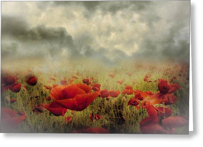 Zeana Romanovna Greeting Cards - Poppies From Heaven - Vintage Greeting Card by Georgiana Romanovna
