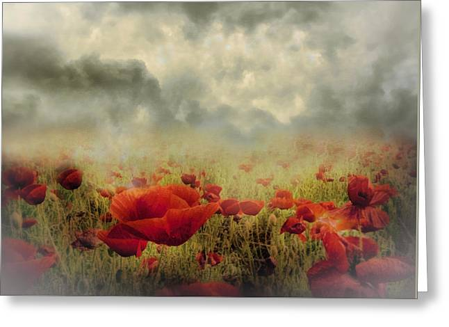 Business Greeting Cards - Poppies From Heaven - Vintage Greeting Card by Georgiana Romanovna