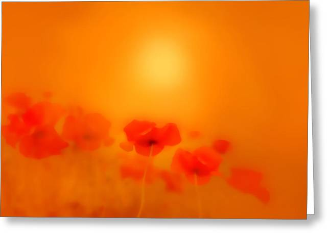 Kelly Greeting Cards - Poppies in gold  Greeting Card by Valerie Anne Kelly