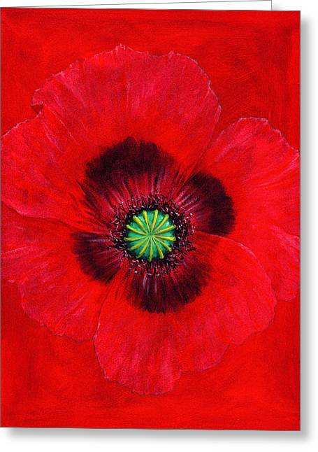Floral Still Life Greeting Cards - Poppy Greeting Card by Brian James