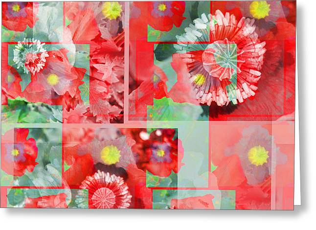 Capsule Greeting Cards - Poppy Collage Greeting Card by Barbara Moignard