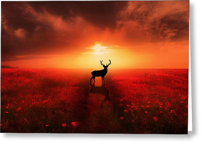 Stags Greeting Cards - Poppy Field Dreams Greeting Card by Jennifer Woodward