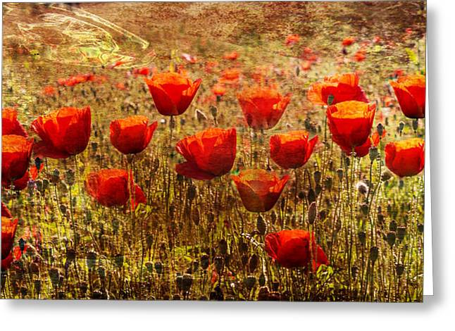 A Sunny Morning Greeting Cards - Poppy Field Greeting Card by Nomad Art And  Design