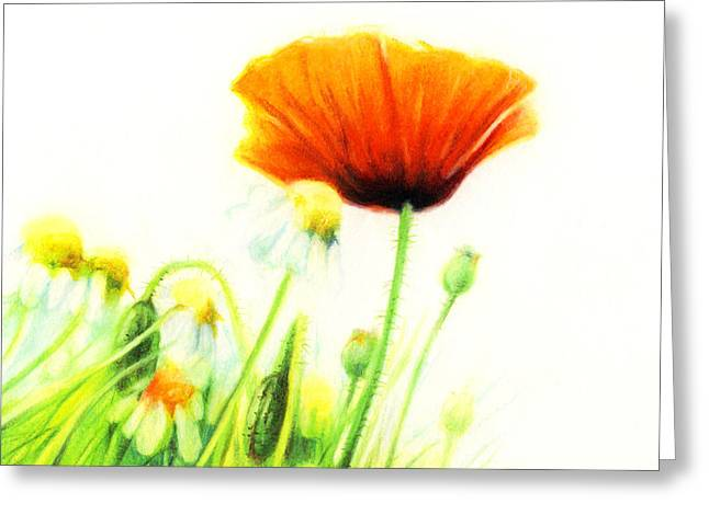 Fresh Green Drawings Greeting Cards - Poppy Flower Greeting Card by Natasha Denger