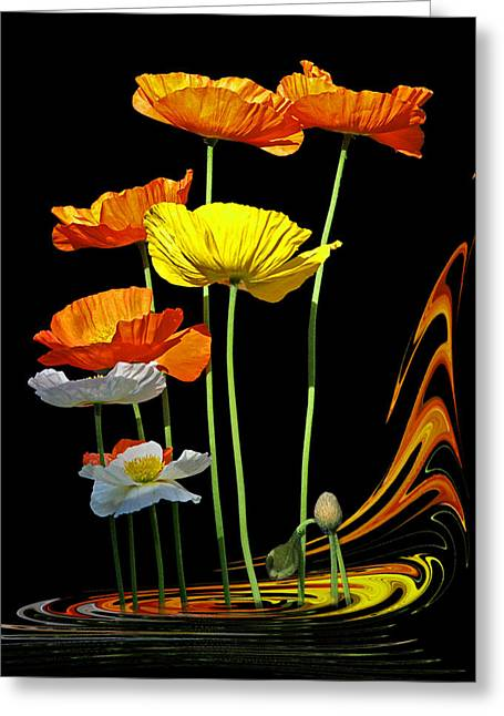 Garden Petal Image Greeting Cards - Poppy Pirouette Greeting Card by Gill Billington