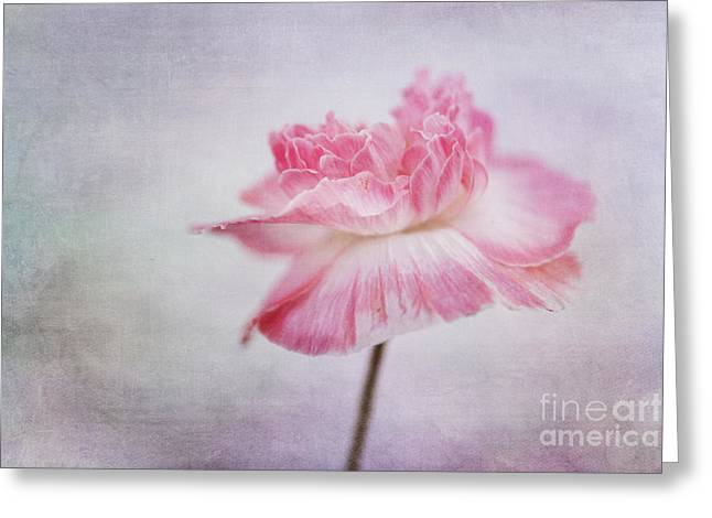 poppy poem Greeting Card by Priska Wettstein