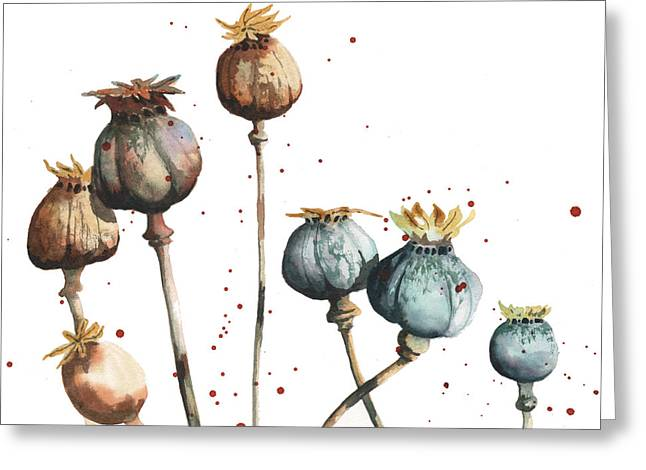 Dried Flower Greeting Cards - Poppy Seeds Greeting Card by Alison Fennell