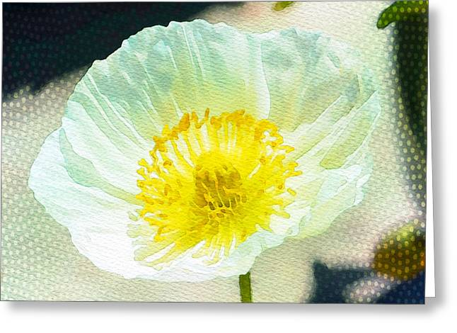 Poppies Prints Greeting Cards - Poppy series - Beside the Sidewalk Greeting Card by Moon Stumpp