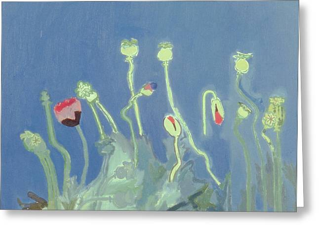 C20th Greeting Cards - Poppyheads Oil On Canvas Greeting Card by David Alan Redpath Michie