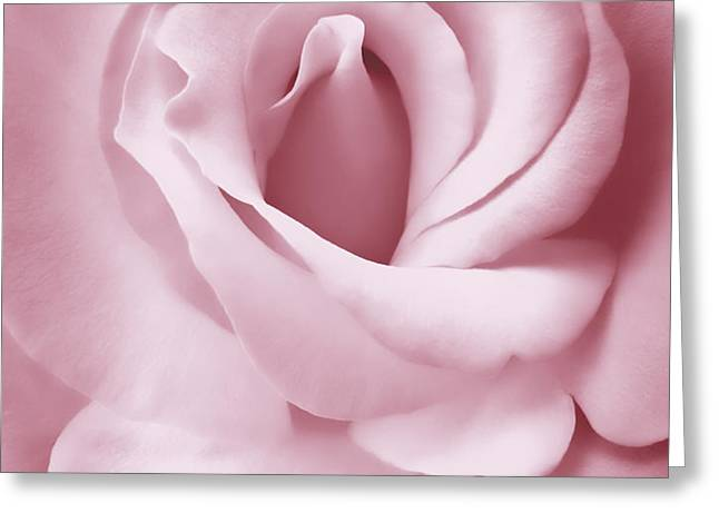 Porcelain Pink Rose Flower Greeting Card by Jennie Marie Schell