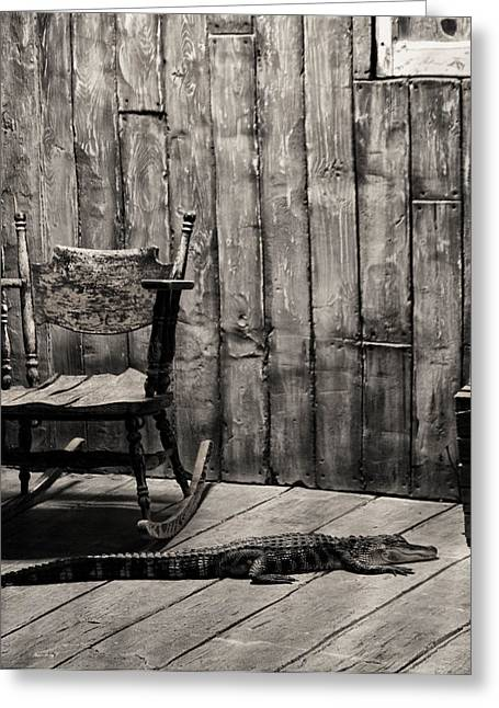 Website Greeting Cards - Porch Alligator Greeting Card by Chris Flees