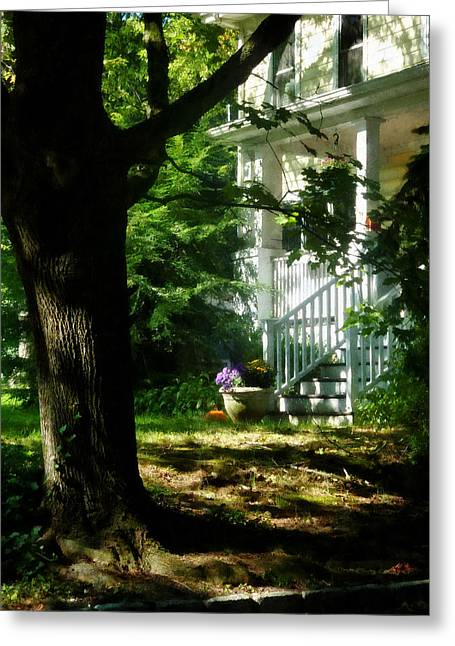 Dappled Sunlight Greeting Cards - Porch With Pot of Chrysanthemums Greeting Card by Susan Savad