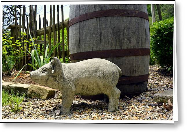 Rain Barrel Photographs Greeting Cards - Pork Barrel Greeting Card by Kathy Barney