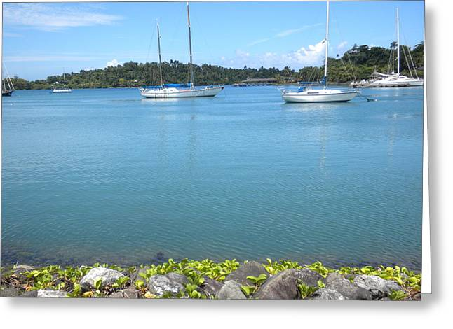 Dock Pyrography Greeting Cards - Port Antonio Dock Greeting Card by Dean Griffiths