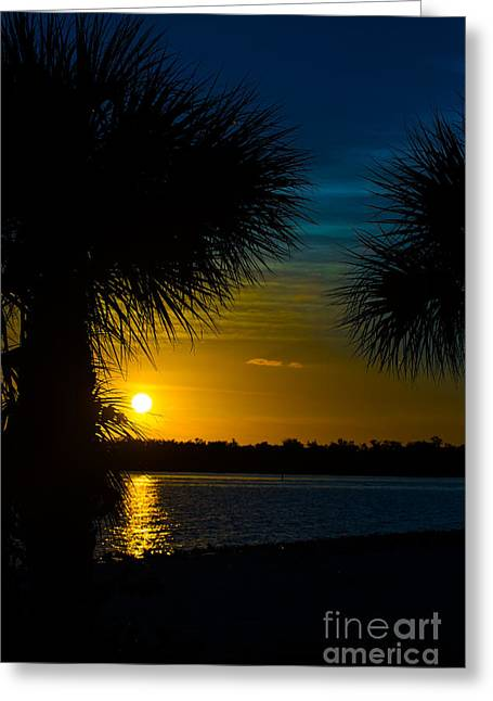 Port Charlotte Beach Sunset In January Greeting Card by Anne Kitzman