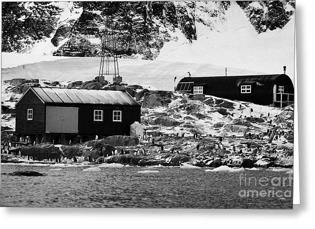 Boat-shed Greeting Cards - Port Lockroy British Antarctic Heritage Trust Station Buildings Including Nissen Hut Accommodation O Greeting Card by Joe Fox