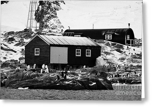 Boat-shed Greeting Cards - port lockroy station buildings including boatshed and nissen hut accommodation on goudier island Ant Greeting Card by Joe Fox