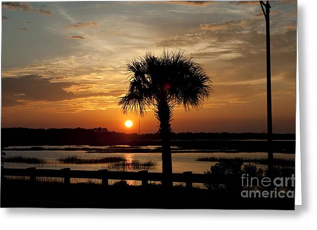 Palmetto Trees Greeting Cards - Port Royal Sunset Greeting Card by Scott Hansen