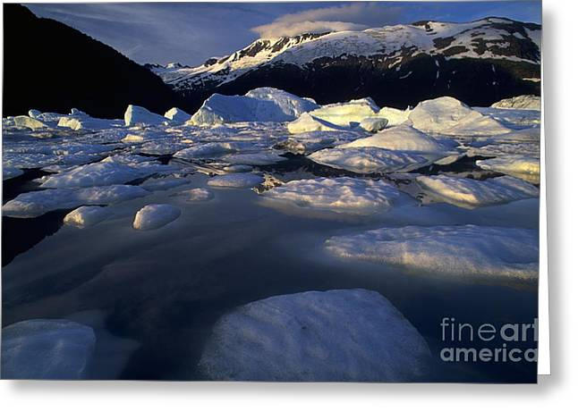 Portage Photographs Greeting Cards - Portage Glacier Greeting Card by Art Wolfe